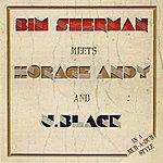 Bim Sherman Bim Sherman Meets Horace Andy & U.Black: In A Rub-A-Dub Style