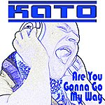 Kato Are You Gonna Go My Way (Feat. Ian Dawn)