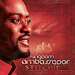 Stitchie Kingdom Ambassador