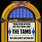 The Tams What Kind Of Fool (Do You Think I Am) / Hey Girl Don't Bother Me