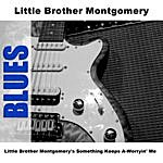 Little Brother Montgomery Little Brother Montgomery's Something Keeps A-Worryin' Me