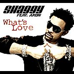 Shaggy What's Love (4-Track Maxi-Single)(Feat. Akon)