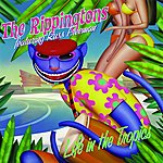 The Rippingtons Life In The Tropics