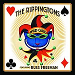 The Rippingtons Wild Card