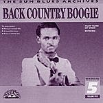 Dr. Ross Back Country Boogie Vol. 2