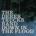Derek Trucks Band Down In The Flood