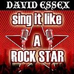 The Originals Sing It Like A Rock Star: David Essex