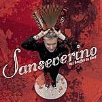 Sansévérino Sanseverino Aux Bouffes Du Nord (Live)