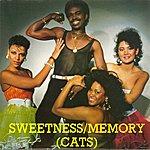 Sweetness Memory (Cats)
