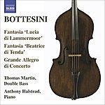 """Thomas Martin Bottesini Collection, Vol.3: Fantasia """"Lucia Di Lammermoor""""/Fantasia """"Beatrice Di Tenda""""/Grande Allegro Di Concerto"""