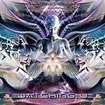 Analog P*ssy Watching U (3-Track Maxi-Single)