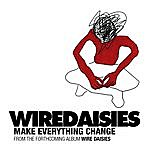 Wire Daisies Make Everything Change