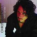 Chris Cornell Part Of Me