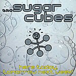 The Sugarcubes Here Today, Tomorrow Next Week!
