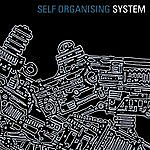 The System Self Organising System