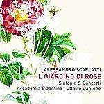 Ottavio Dantone Scarlatti: Giardino di Rose