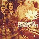 Crossway A Beautiful Thing