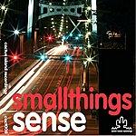 Sense Small Things