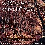 Medwyn Goodall Wisdom of the Forest