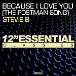 Stevie B. Because I Love You (The Postman Song)