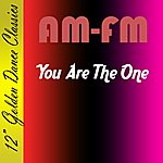 AM/FM You Are The One