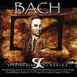 The Organ Bach