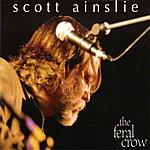Scott Ainslie The Feral Crow