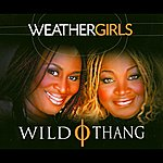 The Weather Girls Wild Thing