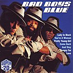 Bad Boys Blue Super 20