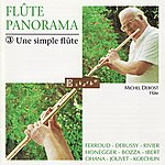 Michel Debost Flute Panorama: A Simple Flute