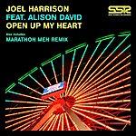 Joel Harrison Open Up My Heart