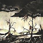 Niki Barr Bloom