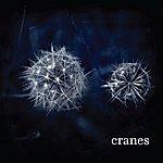 Cranes Cranes