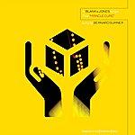 Blank & Jones Miracle Cure - The Australian Summer Mixes (With Bernard Sumner)