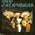 Trio Calaveras Trio Calaveras