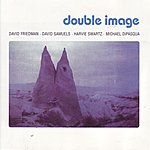David Friedman Double Image