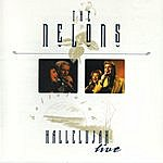 The Nelons Hallelujah Live