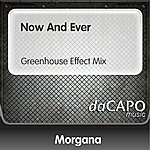 Morgana Now And Ever (Greenhouse Effect Mix)