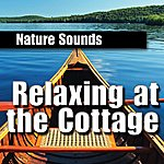 Nature Sounds Relaxing at the Cottage