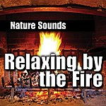 Nature Sounds Relaxing by the Fire