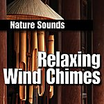 Nature Sounds Relaxing Wind Chimes