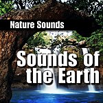 Nature Sounds Sounds of the Earth (Nature Sound)