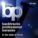 P.O.D. Karaoke - In The Style Of P.O.D.
