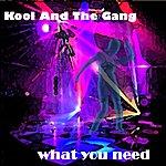 Kool & The Gang What You Need