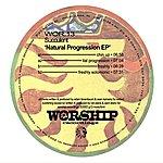 Succulent Natural Progression EP