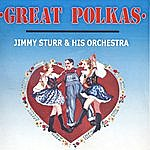 Jimmy Sturr Great Polkas With The Jimmy Sturr Orchestra
