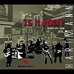 Hartmann Is It You (Secret City Song)
