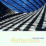 Indigo Reflection