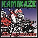 Kamikaze Crash, Burn, and Bleeeed!!!!