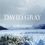 David Gray Life In Slow Motion